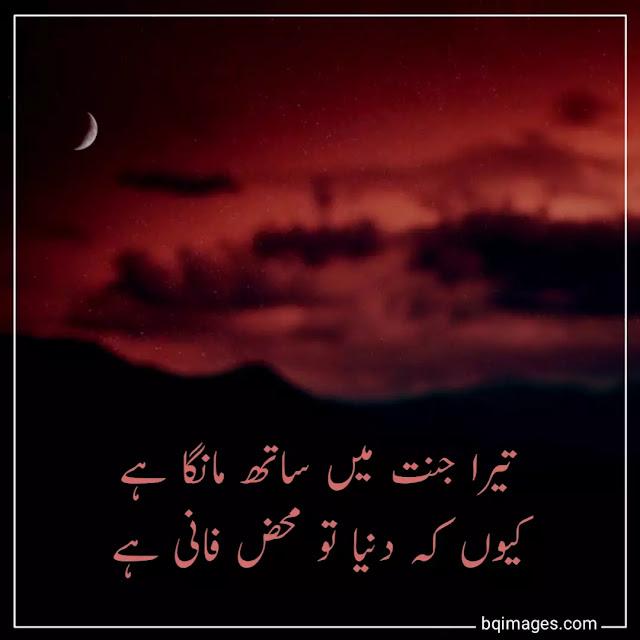 urdu shayari dp download