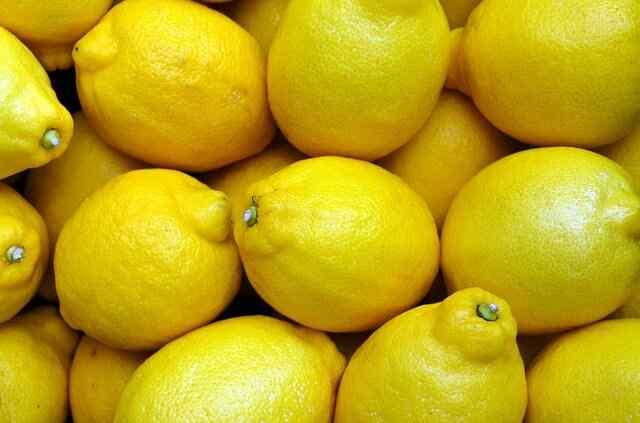 manfaat buah lemon bagi kesehatan dan kecantikan 30 Manfaat Buah Lemon Bagi Kesehatan dan Kecantikan