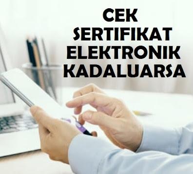 Cara Cepat Cek Kadaluarsa Sertifikat Elektronik Pajak