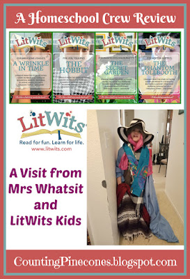 #hsreviews #readforfunlearnforlife #litwits #litwitskits