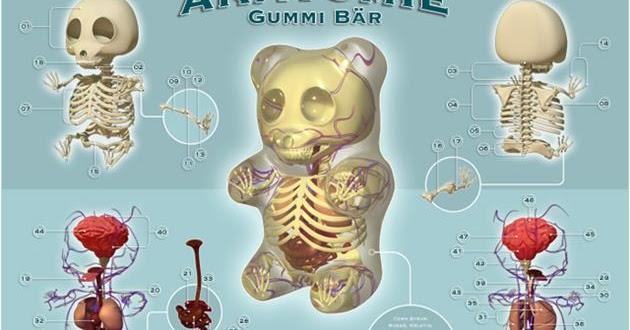 Inspiration Board: Gummi Bear Anatomy Toys
