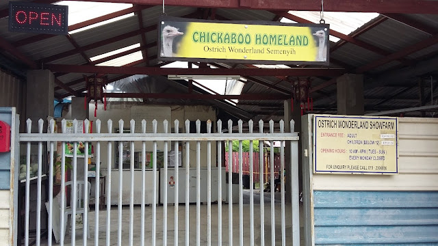 Ostrich Wonderland @ Semenyih