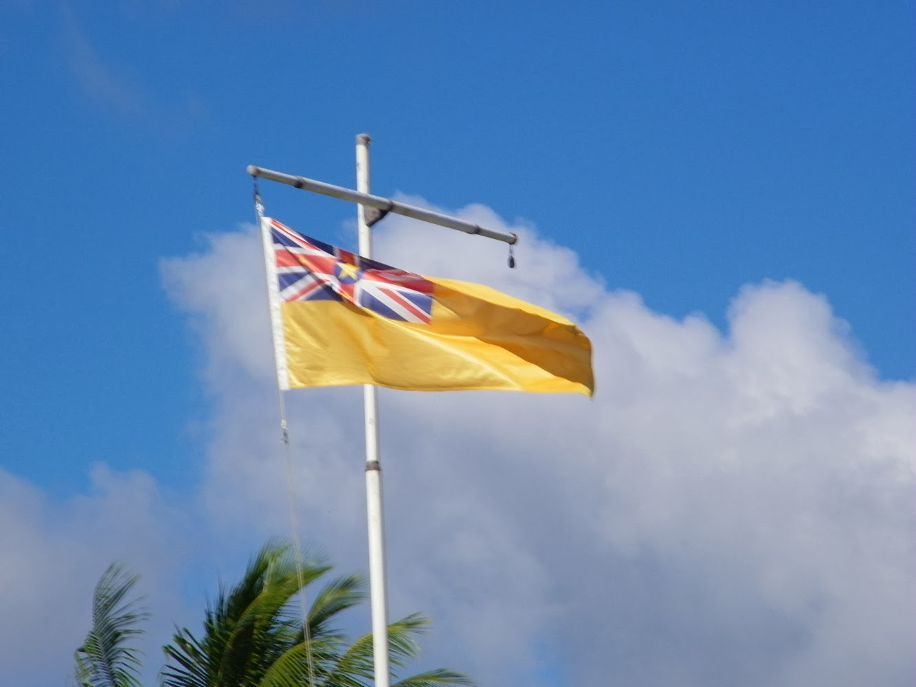 Graafix Flag Of Niue