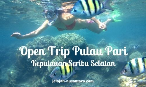 wisata gabungan trip pulau pari