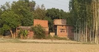 ब्राह्मणपुर ग्रामसभा की साढ़े नौ एकड़ जमीन पर दबंगों का कब्जा | #NayaSabera