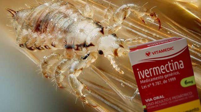 Ivermectina é bom para piolho, não COVID-19. Saiba porquê