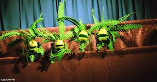 Rumba ambiental   Casa Teatrova 1