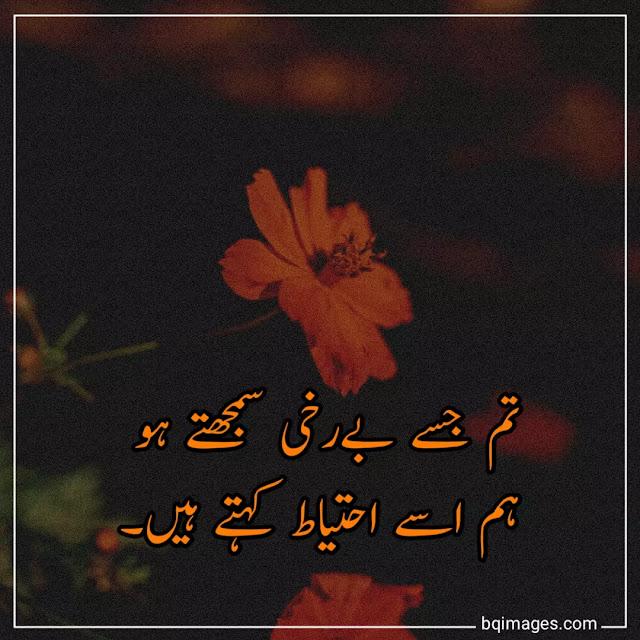 urdu shayari dp for whatsapp download