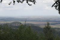 Windmüller haben sich im Harzvorland niedergelassen.