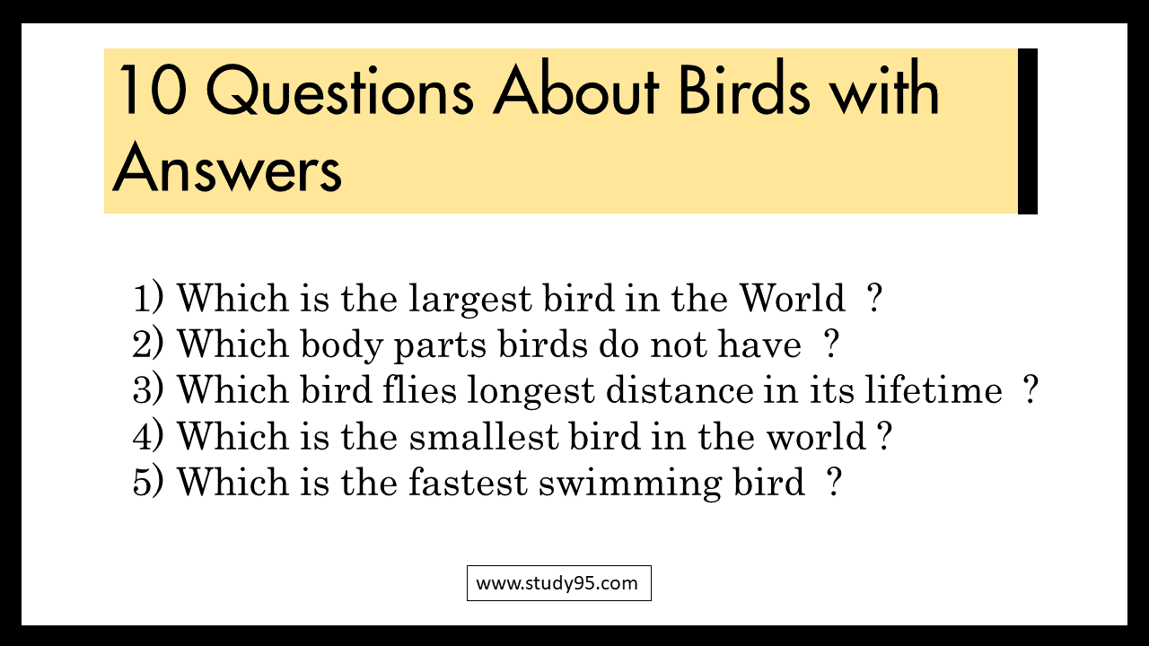 GK questions on birds for Class 1