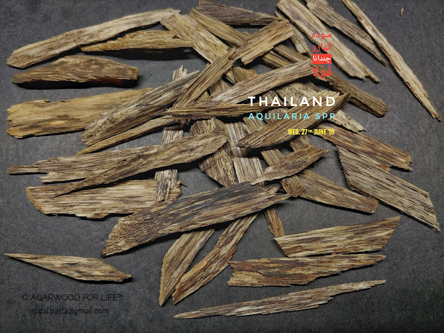 Low grade of Agarwood from Thailand.