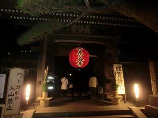長谷寺の初詣