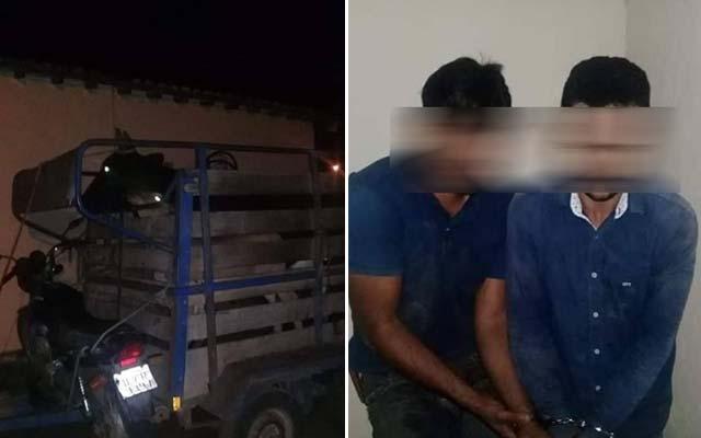 Polícia Militar prende dupla de Serrolândia acusada de roubo de gado na Bahia