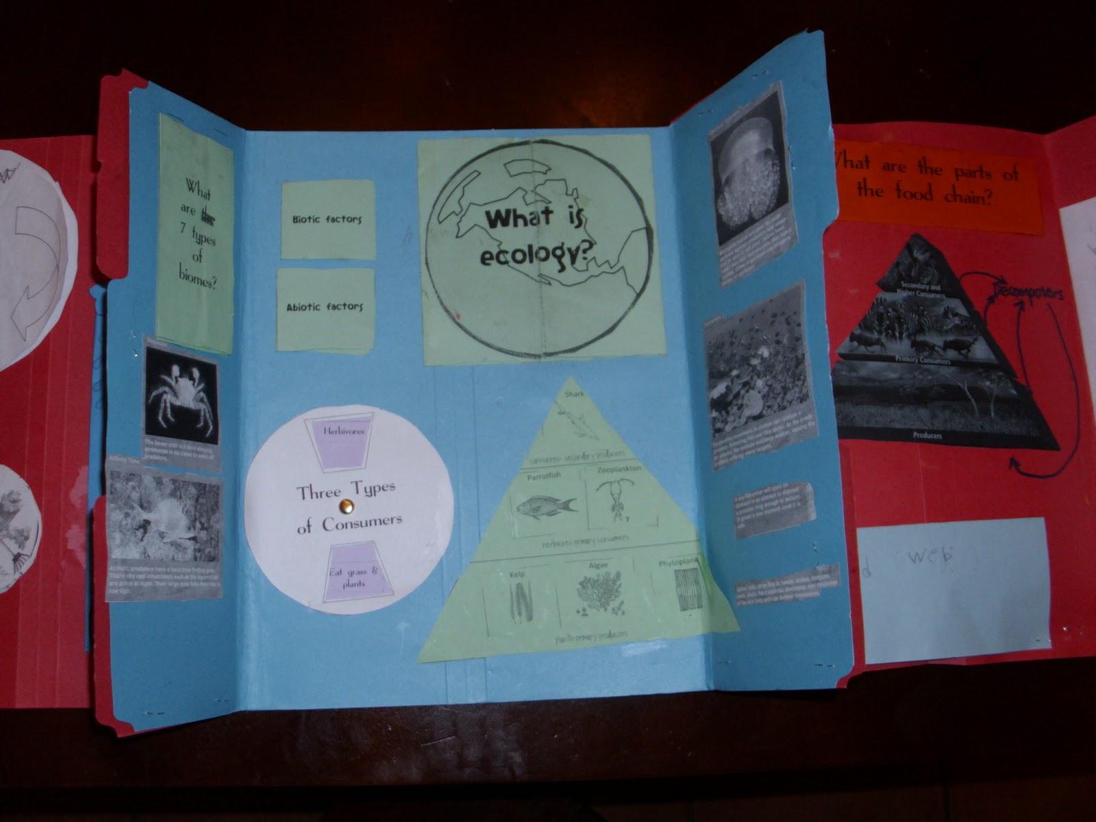 Ecology Amp Astronomy Lapbooks