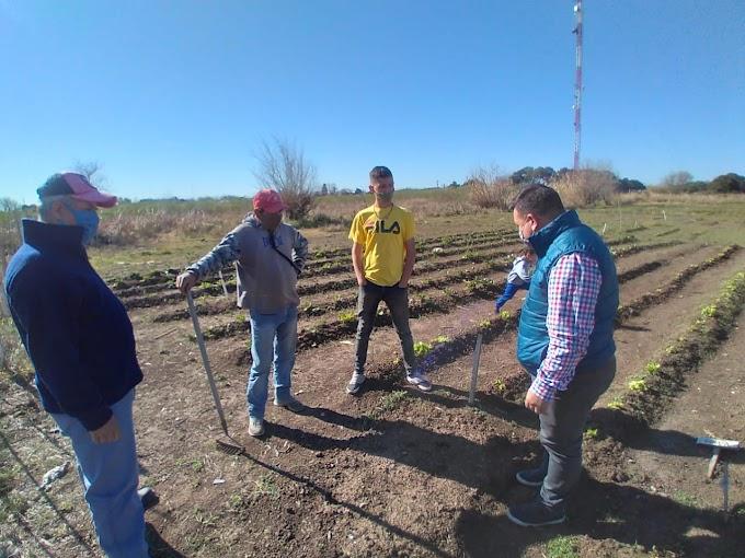 Una huerta comunitaria en La Antenita con vista a fomentar la cultura del trabajo y la formación