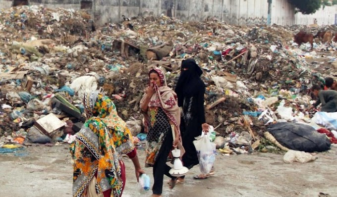 Karachi 90 days to approve Sindh trash