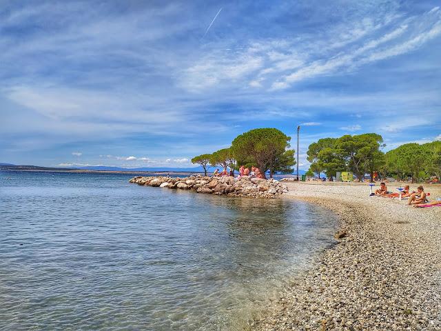 sosny na plaży w Crikvenicy, żwirowe zatoki, Chorwacja