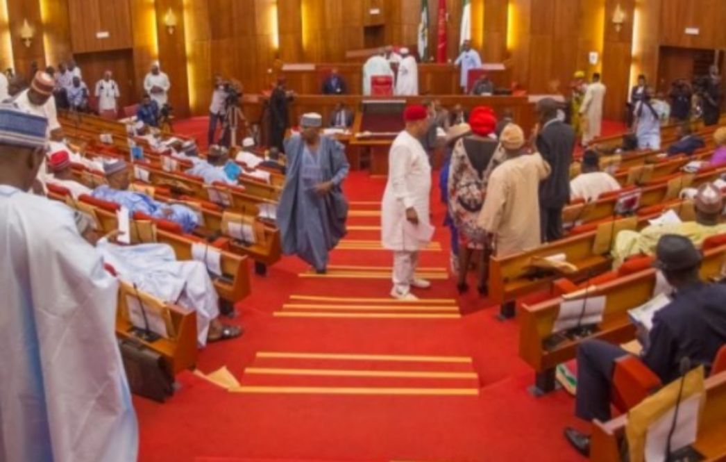 JUST IN: Senate moves to stop JAMB from admitting candidates below 18 years
