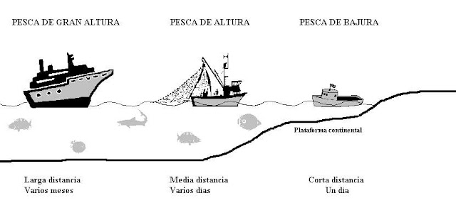 Resultado de imagen de blogspot pesca litoral