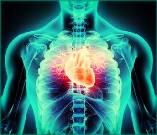 penyakit penyakit jantung dan cara mengatasinya