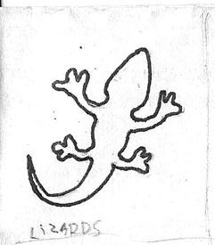 Lizards Raw Drawing