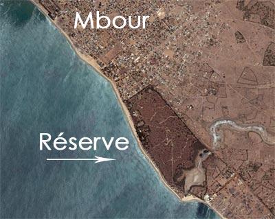 La réserves de Mbour, un site entièrement protégé : Tourisme, visite, réserve, parc, Mbour, protection, environnement, nature, savane, marigot,lagune, écosystème, LEUKSENEGAL, Dakar, Sénégal, Afrique