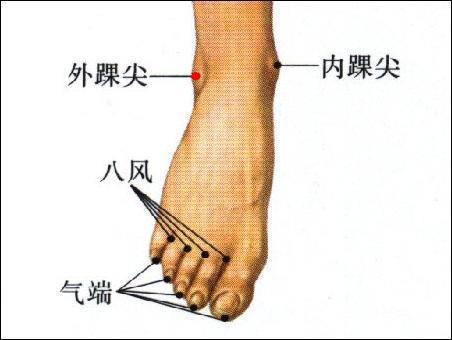 外踝尖穴位 | 外踝尖穴痛位置 - 穴道按摩經絡圖解 | Source:zhongyibaike.com