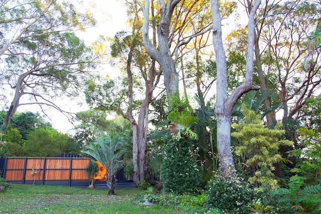 20 ft Small and Cozy Shipping Container House, NSW, Australia 10