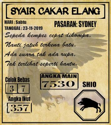 SYAIR SYDNEY 23-11-2019
