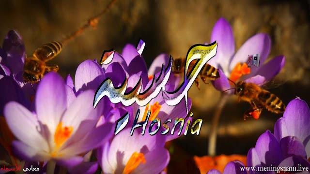 معنى اسم حسنية وصفات حاملة هذا الاسم Hosnia