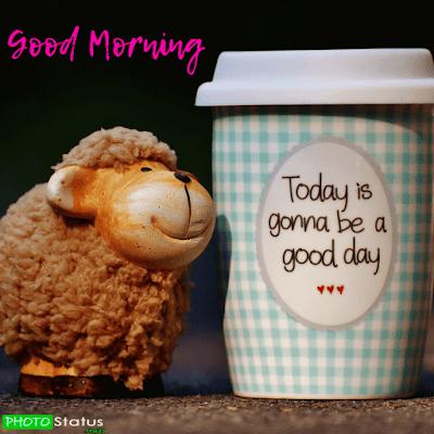 good mornings status English