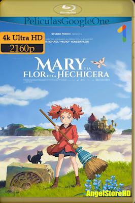 Mary Y La Flor De La Hechicera (2017) [4K UHD [HDR] [Latino-Japonés] [Google Drive] – By AngelStoreHD