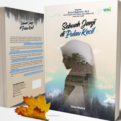 Novel Sebuah Janji di Pulau Kecil
