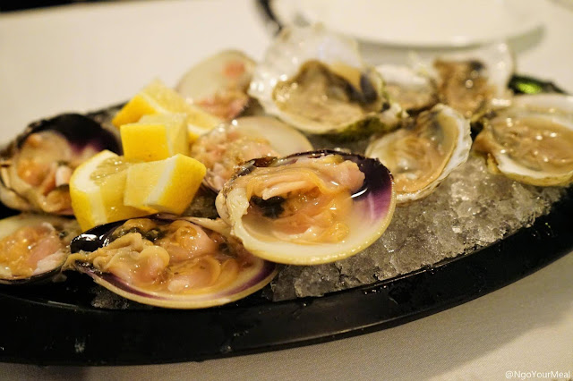 Oysters and Little Neck Clams at Marliave in Boston