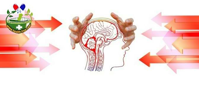 الأليات الفيزيولوجية للإجهاد والتوتر العصبي والضغط النفسي الحاد