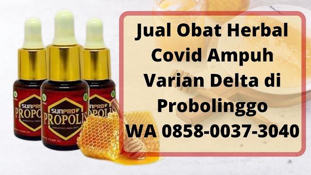 Jual Obat Herbal Covid Ampuh Varian Delta di Probolinggo WA 0858-0037-3040