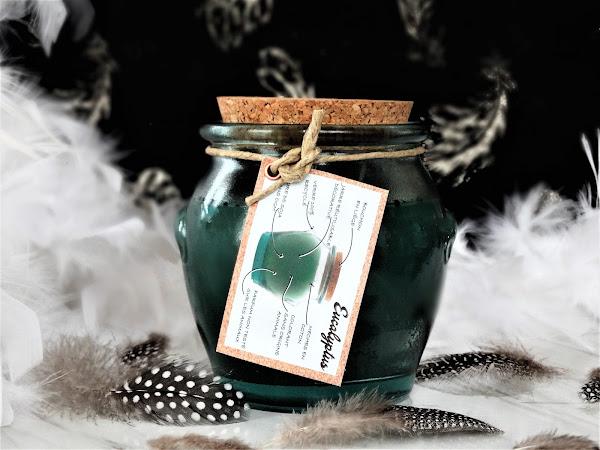 Eucalyptus - Mr DeFrance Candle