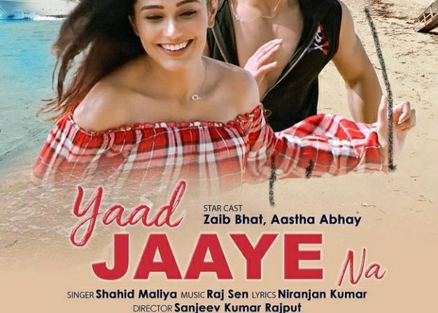 Yaad Jaaye Na Lyrics - Shahid Maliya - Download Video or MP3 Song
