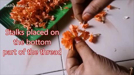 kankambaram-flower-tying-1ai.png