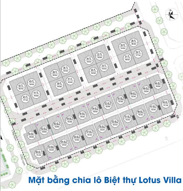 Mặt bằng chia lô khu biệt thự Lotus Villa