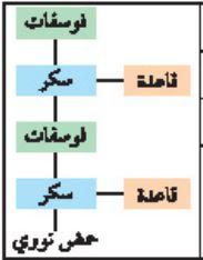 النيوكليوتيدات