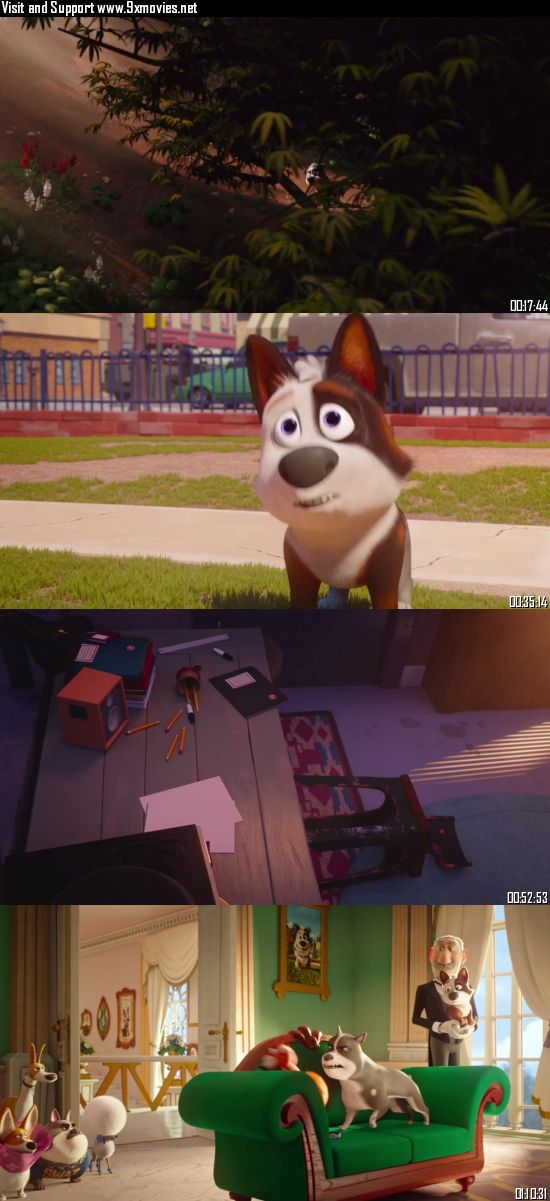 Dog Gone Trouble 2021 Dual Audio Hindi 720p WEB-DL 750mb