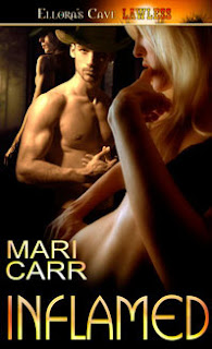 Guest Review: Inflamed by Mari Carr