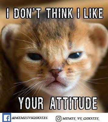 I like Your Attitude