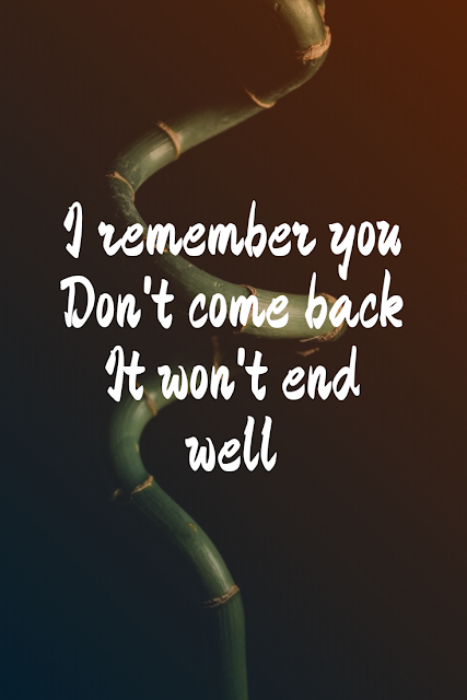 I remember you  Don't come back  It won't end well