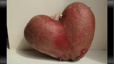 ubi merah berbentuk hati