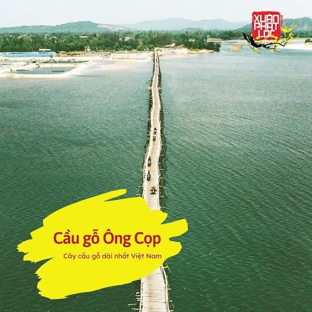 Quy Nhơn - Phú Yên - Nha Trang: Khám phá cảnh quan thiên nhiên