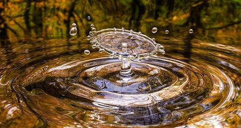 A vízgazdálkodást segítő monitoringrendszert alakítottak ki a Dél-Alföldön és Vajdaságban