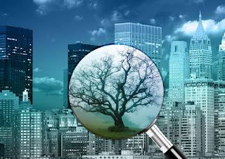 Resumo de Direito Ambiental Internacional