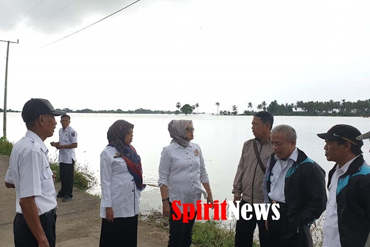 Kadis Petanian Sulsel, Bantuan Tahap Awal Untuk Korban Banjir Akan Diserahkan Oleh Menteri Pertanian